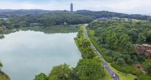 漫步宜园,穿梭于小桥流水和江南园林中,饱览团氿风光.